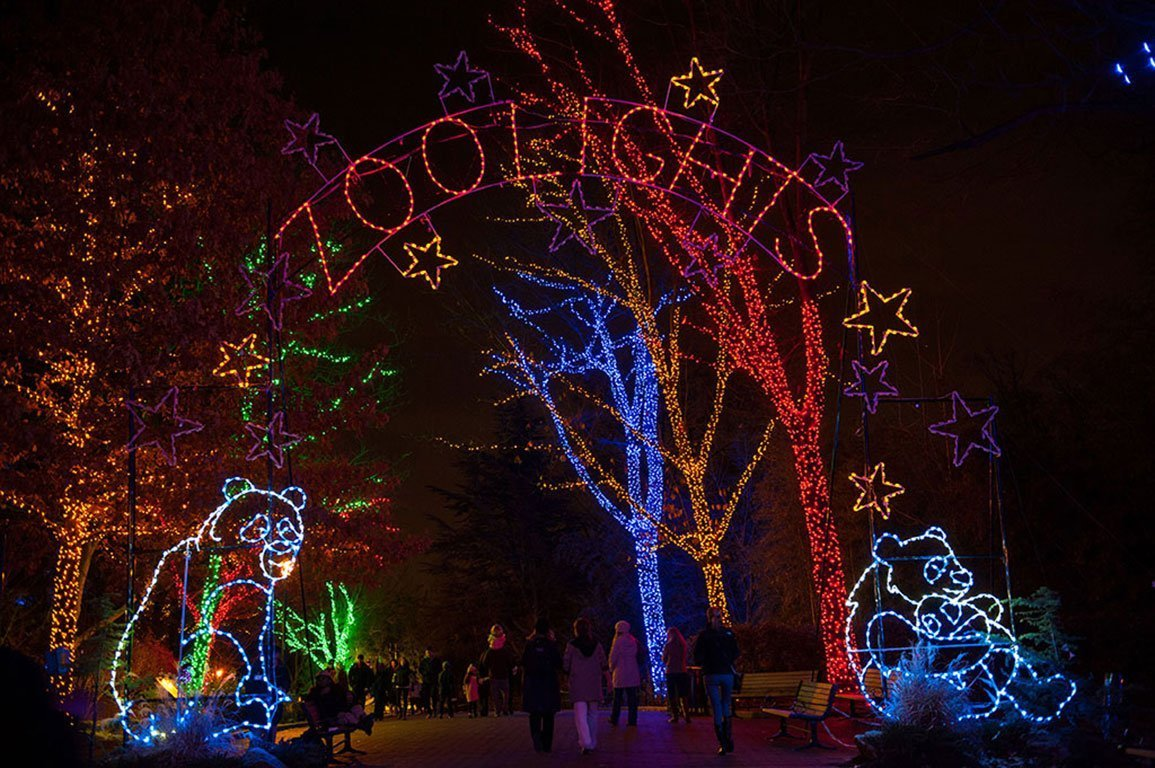 Washington DC Christmas Zoolights