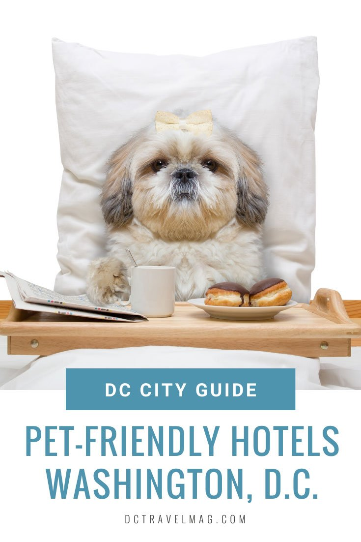 washington DC Pet Hotels