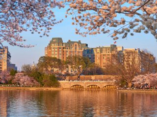 Where to stay in Washington DC during Cherry Blossom Season