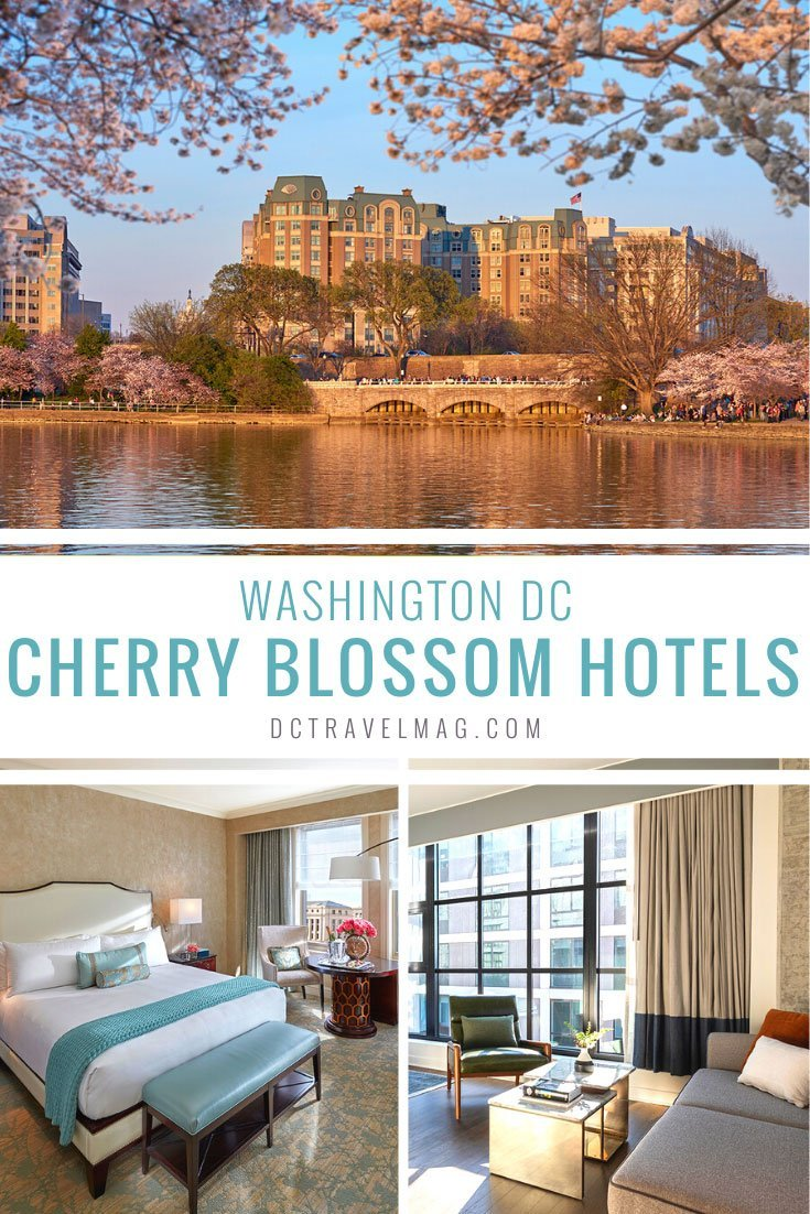 Where to stay in Washington DC during the Cherry Blossom Festival