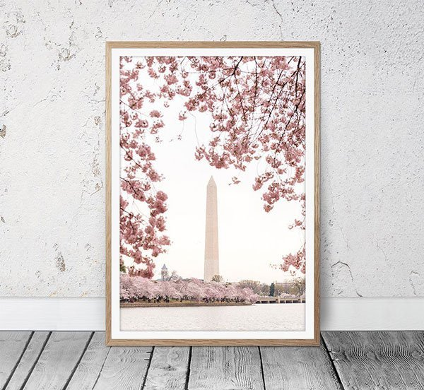 Washington DC Posters and Prints