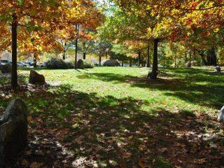 Joseph Beuys Sculpture Park University of Maryland