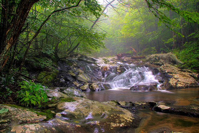 Shenandoah National Park- white oak canyon