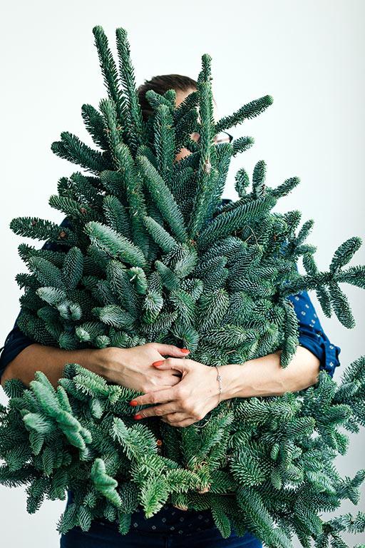 Christmas Tree Farms in Virginia