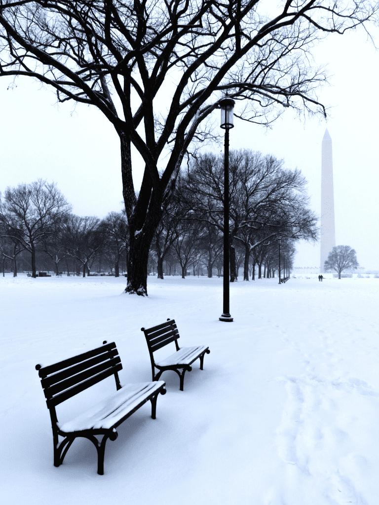 Washington DC Winter