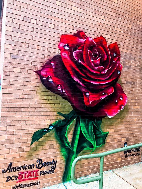 Murals DC
