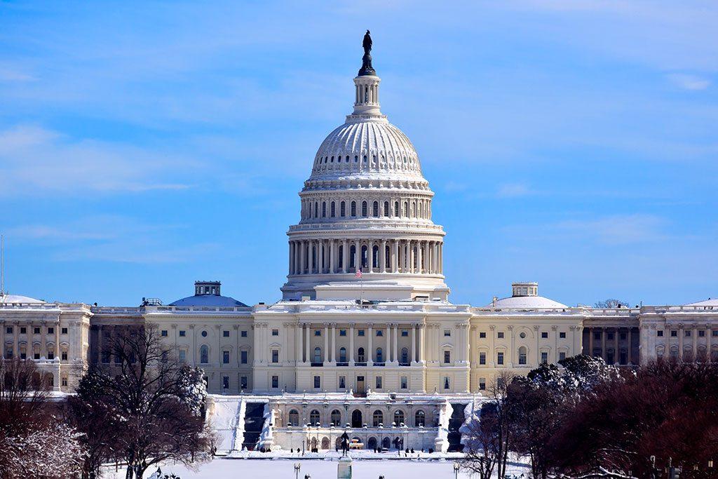 US Capitol Sledding- washington dc snow