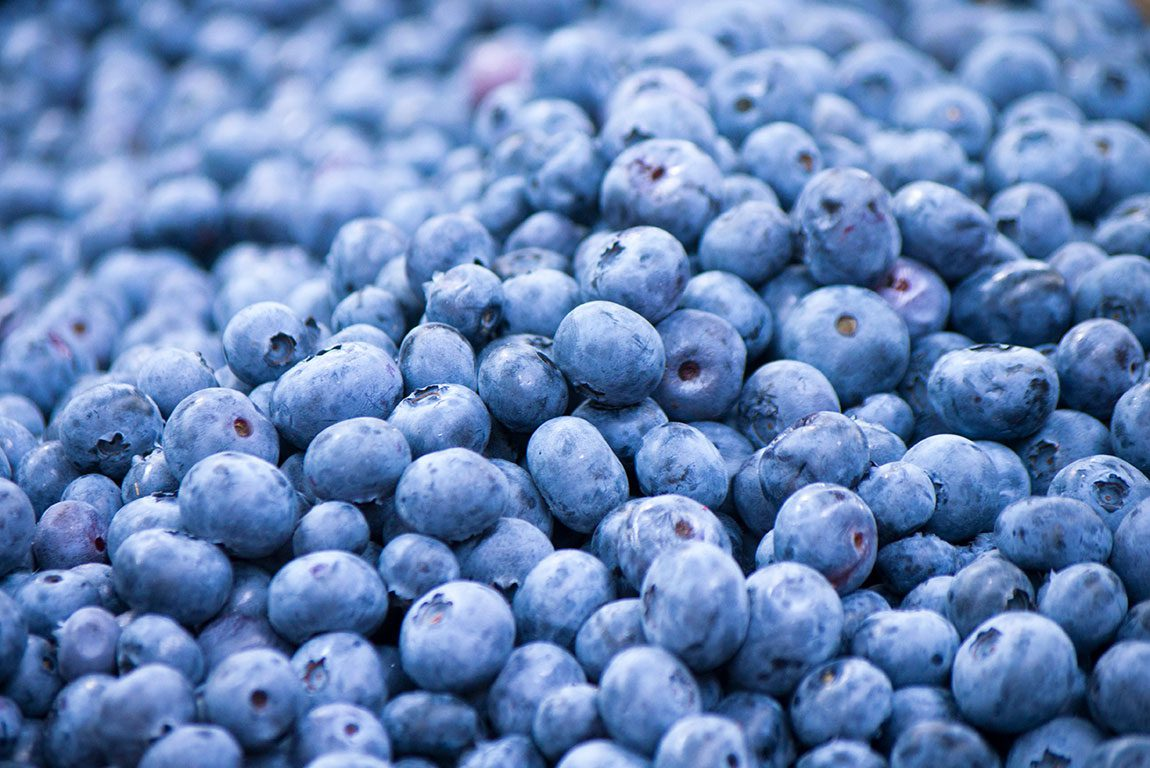 30 Stunning Farms To Go Blueberry Picking In Virginia