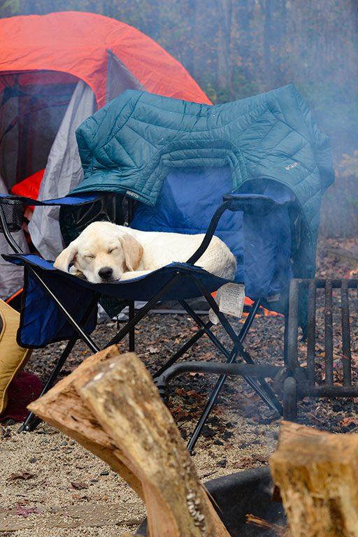 Camping in Virginia- Bear Creek Lake State Park