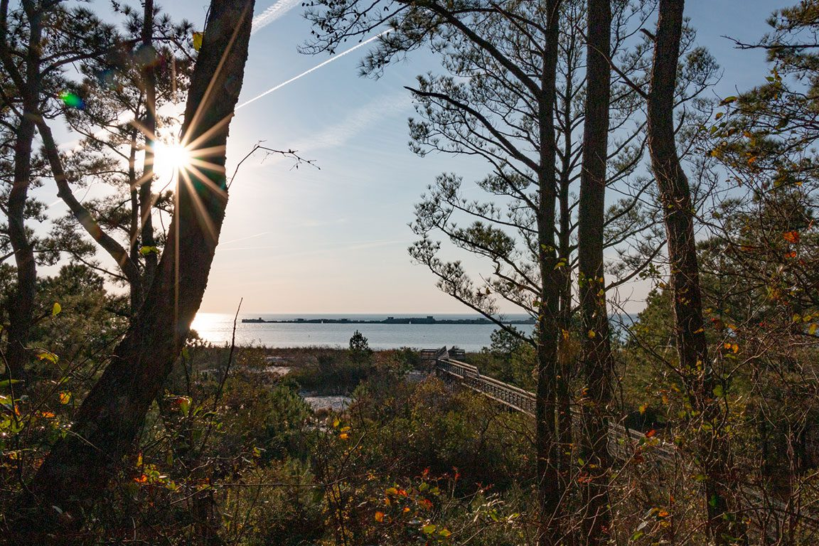 Kiptopeke State Park - Virginia State Parks and Virginia Campgrounds and Campsites