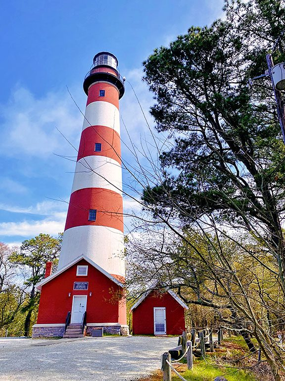 Chincoteague Virginia- Assateague Lighthouse