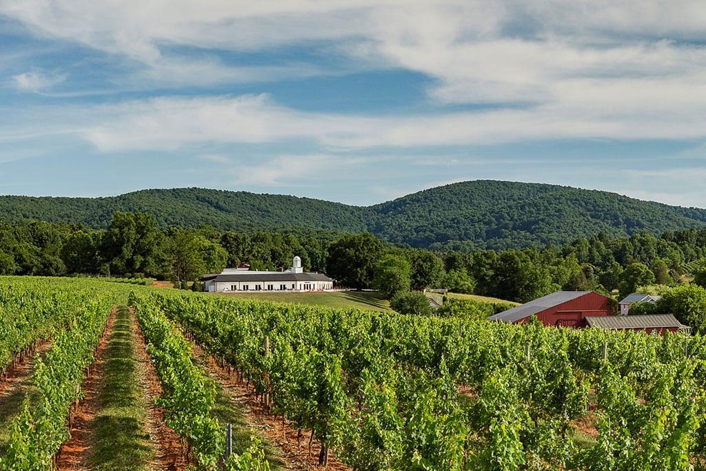 Barboursville vineyards in Charlottesville Virginia
