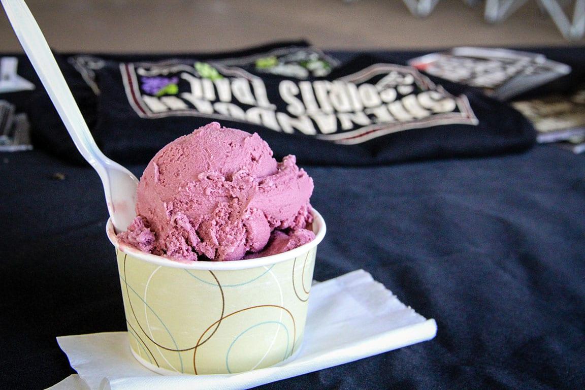Smiley's Ice Cream in Mt Crawford VA