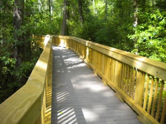 Washington Ditch Boardwalk at Great Dismal Swamp in Suffolk Virginia