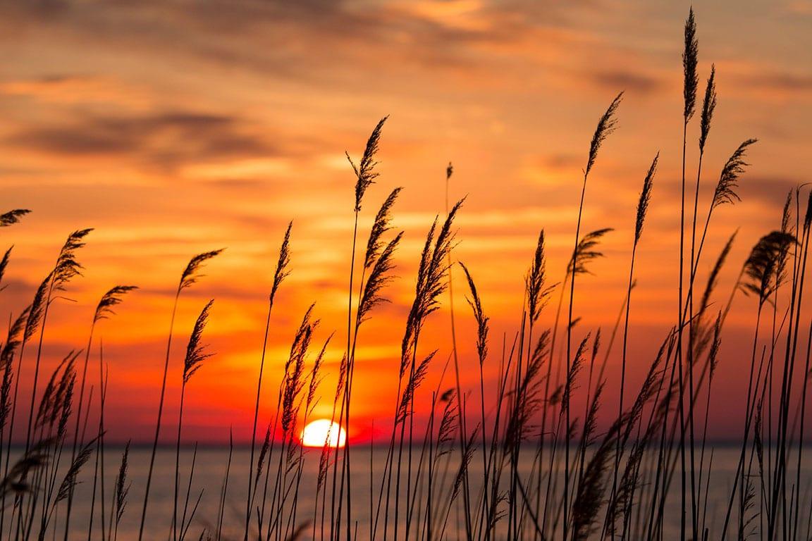 Chesapeake Bay beaches in Maryland