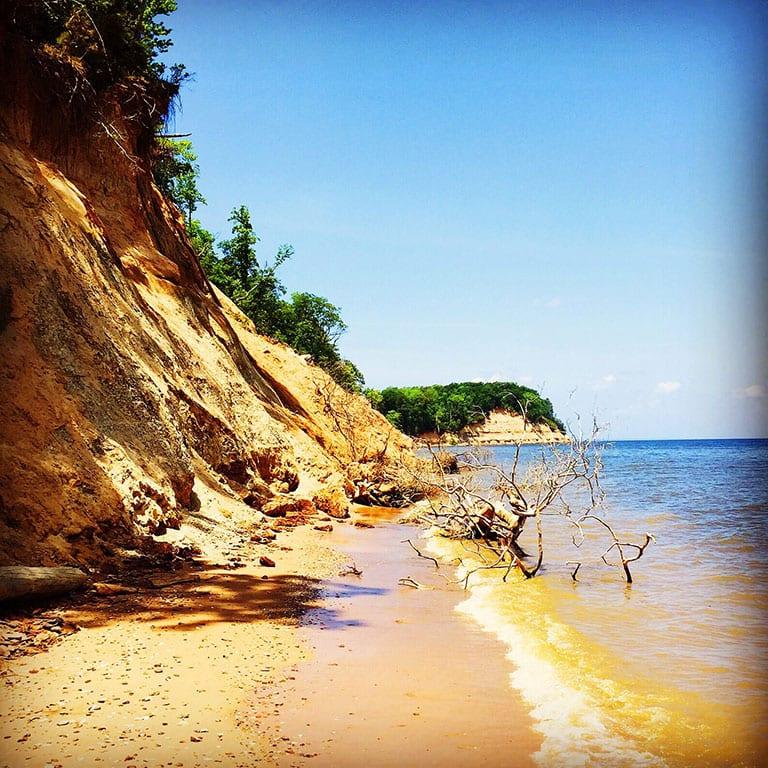 Calvert Cliffs State Park in Maryland beaches