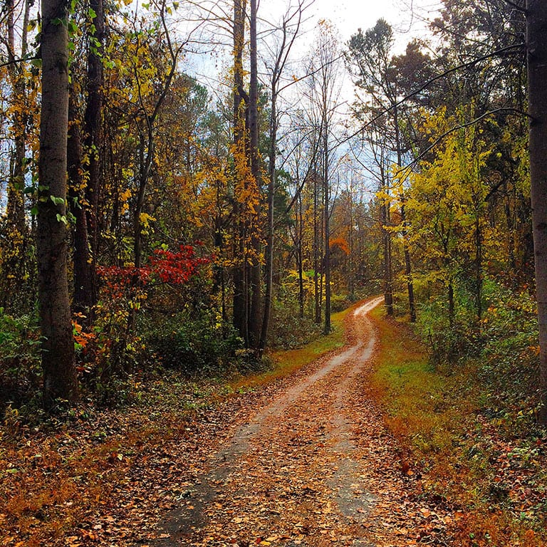 Parks and trails in Charlottesville Virginia