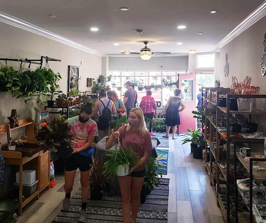 Kelley Gardens- Baltimore plant shops near me