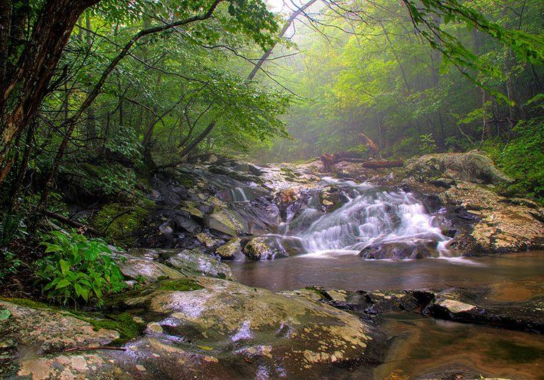 Virginia--Shenandoah-National-Park--Waterfalls--White-Oak-Canyon-002