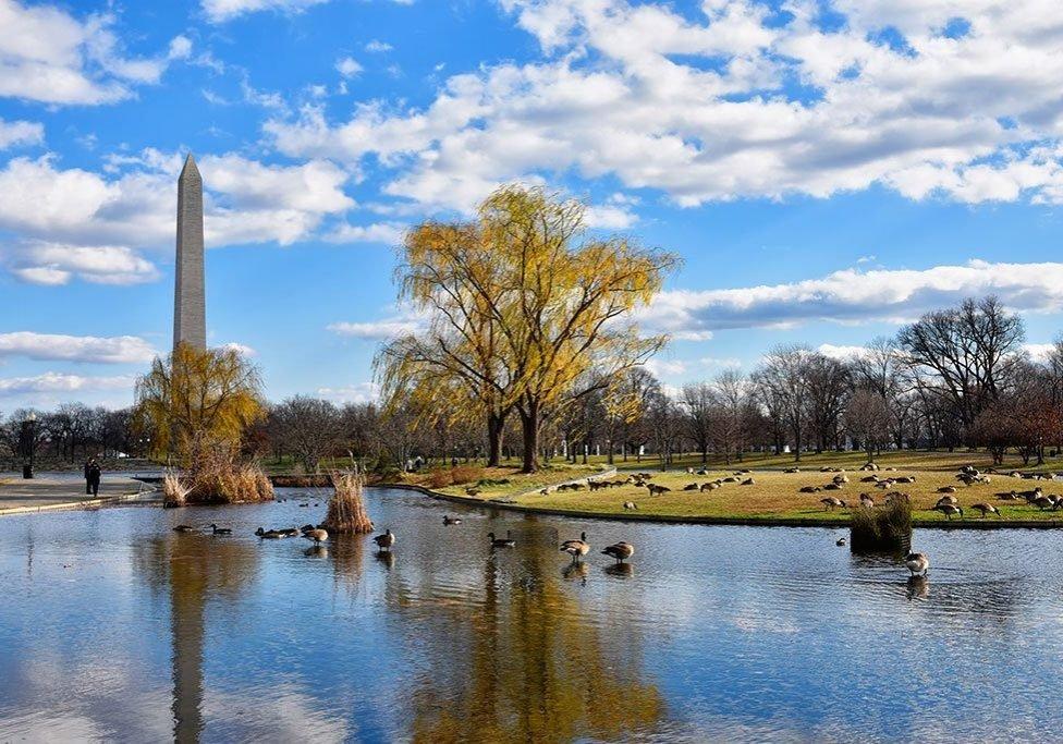 Washington-DC--National-Parks--Constitution-Gardens-1024px--Deposit-Photos